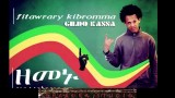 Hot New Ethiopian Music 2014 Fitawrary Kibromma   Zemenu Official Audio 640×480