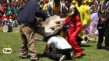 DireTube Video A Man Carrying A Donkey on his back – Amusing Video