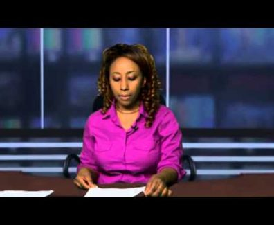 ESAT DC DAILY Ethiopian NEWS Feb 22, 2013 AddisVideo